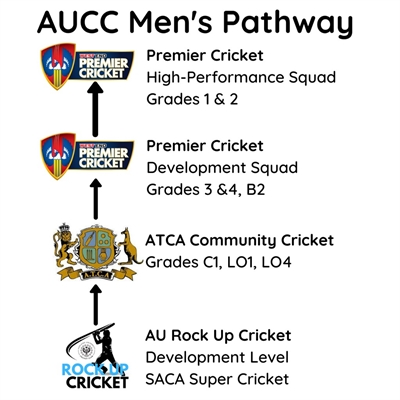 AU  Rock  Up  Cricket  Development  Level